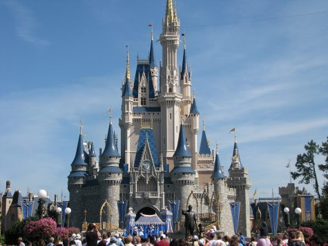 Top 5 Best Disney World Rides