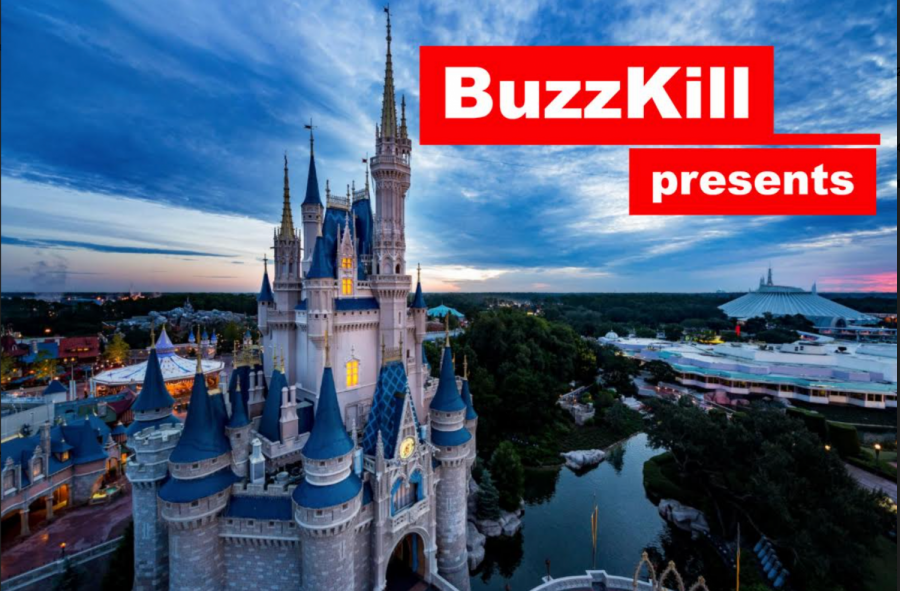 Buzzkill presents the top 8 worst people you'll find while visiting Disney